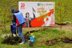 Активная молодежь Приморья высадила Аллею Памяти во Владивостоке